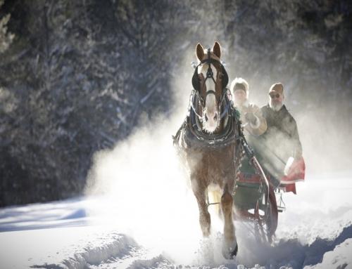 Winteraktivitäten in Neuengland