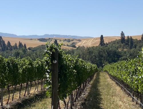 Geheimtipps von der Expertin: Walla Walla und Bergevin Lane Vineyards